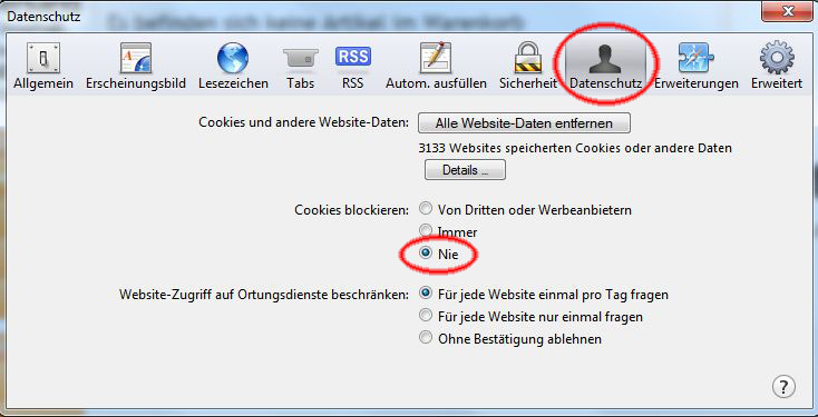 Browsereinstellungen für den Safari Version 5